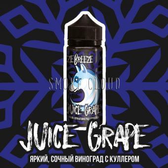 Жидкость Freeze Breeze 120 мл. Juice Grape, жидкость с виноградом, виноград с холодком жидкость, купить жижку в чебоксарах, купить жижку с холодком, фризи бризи джус грейп