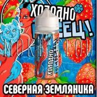 Жидкость Холодно Песец! 100 мл. Северная Земляника, жидкость с земляникой, жидкость с кулером и земляникой, земляничная жижка, куптиь жижку в чебоксарах